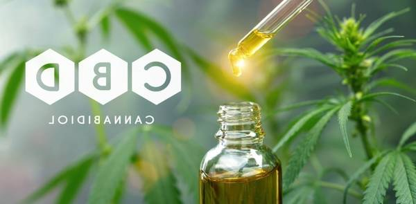 Acheter CBD Amnesia Cbd Infused Syrup ou uk cbd juul pods | Boutique